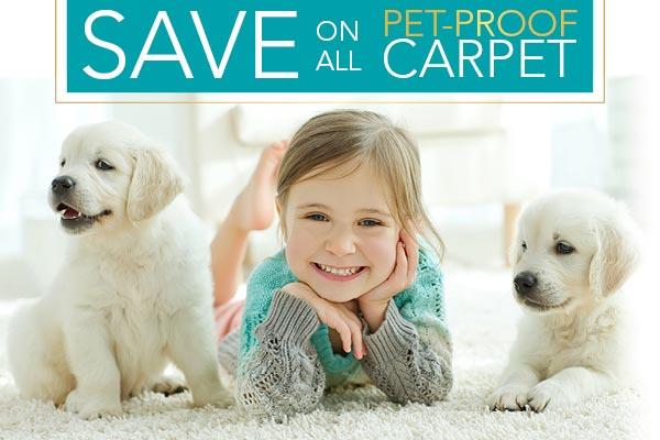 Save on all pet-proof carpet during our Christmas Sale going on now!